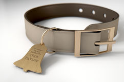 Leather Collar With Tag Royalty Free Stock Images