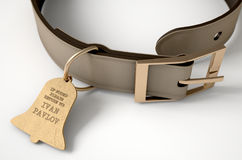 Leather Collar With Tag. A concept depicting pavlovian conditioning theory of a leather dog collar and a bell shaped identification tag showing ownership to ivan Stock Photography