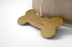 Leather Collar With Tag Royalty Free Stock Photos