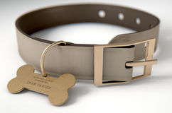 Leather Collar With Tag. A concept depicting pavlovian conditioning theory of a leather dog collar and a bone shaped identification tag showing ownership to ivan Stock Photos