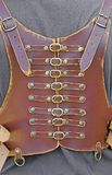 Leather corset with many brass buckles Stock Photography