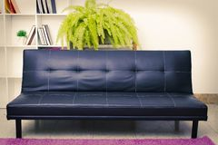 Leather Couch with Bookcase. Navy blue leather couch in livingroom or lobby with area rug and bookcase and plant in background stock images