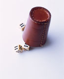 Leather dice cup Stock Images