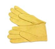 Leather gardening gloves Stock Image