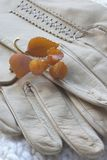 Leather Gloves and amber. Amber and gold autumn leaf pin on leather glove stock images
