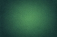 Leather Green, Spot-lit Royalty Free Stock Photo