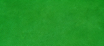Leather green texture Stock Images