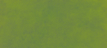 Leather green texture Royalty Free Stock Images