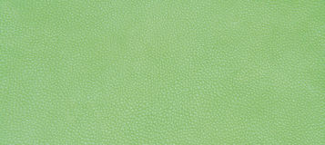 Leather green texture Royalty Free Stock Photos