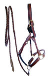 Leather Halter and Braided Leadrope royalty free stock images