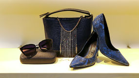 Leather handbag, shoes and sunglass for women Stock Images