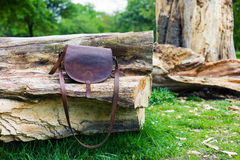 Leather handbag on tree trunk Royalty Free Stock Image