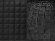 Leather Hide Stock Photography
