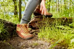 Leather hiking boots and hand of a female hiker. In a low angle view as she steps over a fallen tree trunk in the forest royalty free stock photography