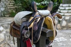 Leather horse harness on a wooden post. Close-up royalty free stock images