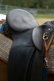 A Leather Horse's Saddle. On a Horse Royalty Free Stock Image