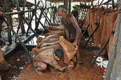 Leather industry of Kolkata Stock Image
