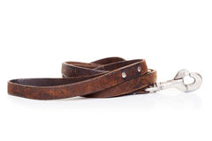 Leather leash Stock Photos