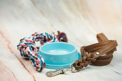 Leather leashes, food bowls and pet bites. Pet supplies concept stock photo