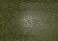 Leather material Royalty Free Stock Photo