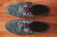 Leather Men`s Brogue Shoes with Colored Laces  on The Floor royalty free stock image