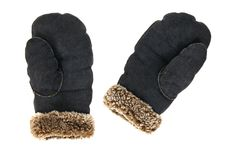 Leather mittens on white background Stock Images