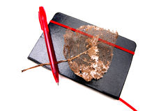 Leather notebook, autumn leaf and ballpoint Stock Images
