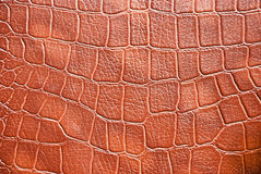 Leather pattern. Closeup of leather texture with abstract pattern Stock Image