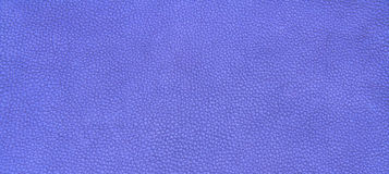 Leather purple texture Stock Photography