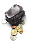 Leather Purse And Coins Stock Images