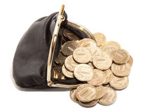 Leather purse and gold coins Stock Photos