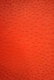 Leather red texture. With dots Royalty Free Stock Image
