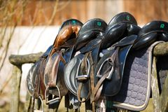 Leather saddle horse Royalty Free Stock Image