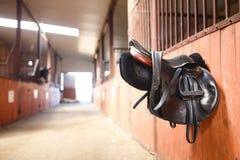 Leather saddle horse Royalty Free Stock Photography