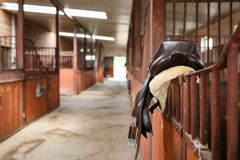 Leather saddle horse Stock Photo