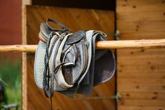 A leather saddles horse Stock Photo