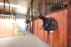 Leather saddles horse Stock Images