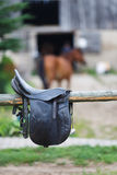 A leather saddles horse in a stable Stock Images
