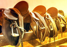 Leather saddles. Sunlight Rider old Leather Saddles royalty free stock photography