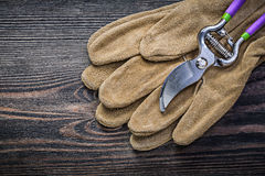 Leather safety gloves sharp secateurs on vintage wooden board ga. Rdening concept Stock Images