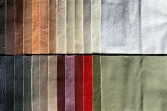 Leather sampler Royalty Free Stock Images