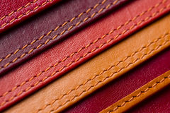 Leather samples with stitches Royalty Free Stock Photo