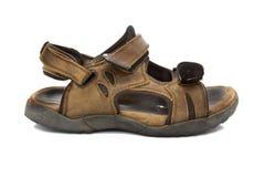 Leather sandal isolated on white Royalty Free Stock Image
