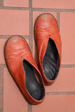 Leather shoe. Royalty Free Stock Images