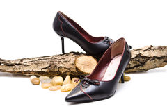 Leather shoes. With stone and wood Royalty Free Stock Photography