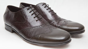 Leather Shoes Royalty Free Stock Images
