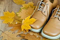 Leather shoes and yellow leaves Stock Images