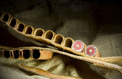 Leather shotgun cartridge belt Stock Image