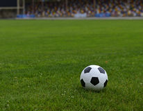 Leather soccer ball Stock Photography