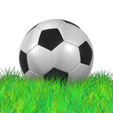Leather Soccer Ball on Grassl high resolution  3D illustration Royalty Free Stock Photography